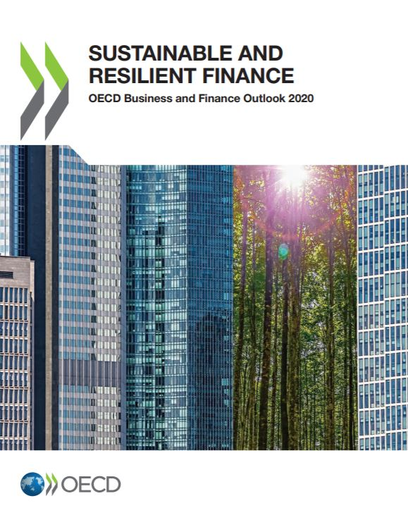 ESG Investing: Practices, Progress and Challenges